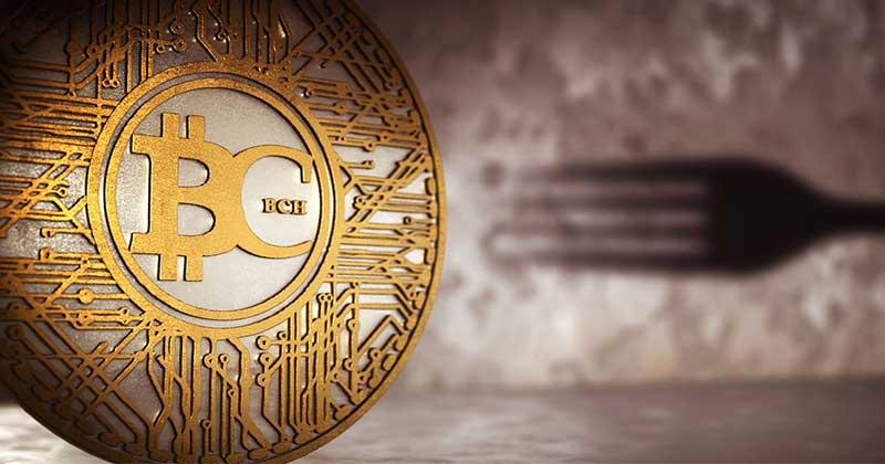 Bitcoin-Cash-